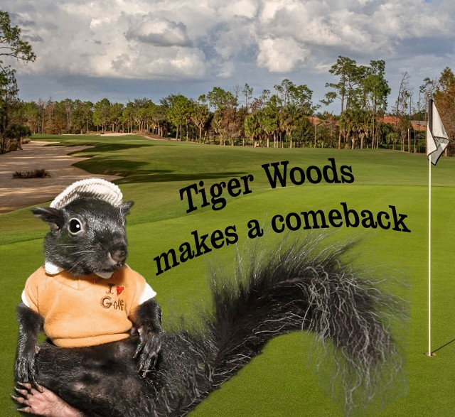 Tiger Woods makes a comeback
