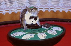 sugar bush squirrel blackjack dealer poker series