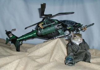 sugar bush squirrel - helicopter pilot in Iraq chopper force