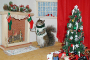 sugar bush squirrel is home for the holidays fireplace