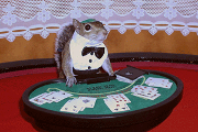 sugar bush squirrel as black jack dealer in las vegas casino