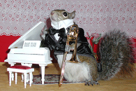 sugar bush squirrel trombone virtuoso white piano
