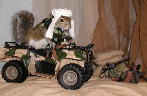 still hunting for osama bin laden...all terrain vehicle
