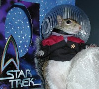 Star Trek Squirrel